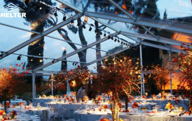 transparent tent - tents for weddings - large party marquee for sale - luxury wedding tent - event tents - shelter tent-46